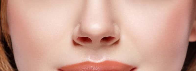 Orificios de la nariz