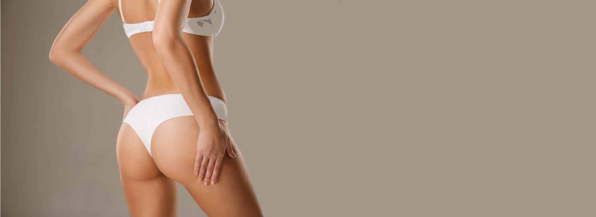 Función del tejido adiposo